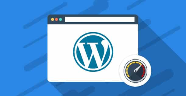 Choosing the right and speed WordPress Themes
